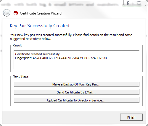Figure 11: Summary of newly created certificate